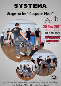 Stage de Systéma à Nîmes: Les coups de pieds. @ Ansd   Nîmes   Occitanie   France